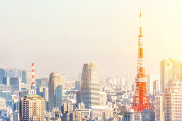 Asia Business concept for real estate and corporate construction - panoramic modern city skyline bird eye aerial view of tokyo tower under golden sun Tokyo, Japan