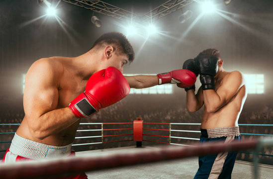 Boxing sparring boxers