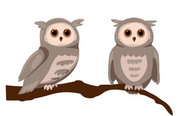 grey cartoon owls on branch
