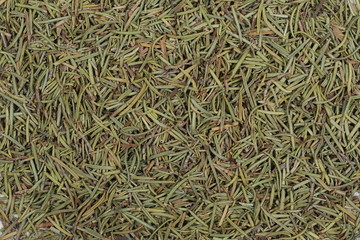 Pile of dry rosemary background and texture