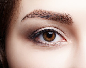 Closeup macro shot of  human brown female eye. Woman with natural nude face beauty makeup