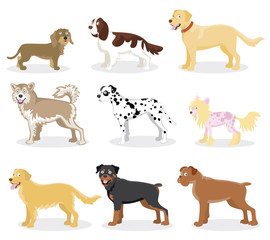 Funny cartoon dogs - Vector set of dog breed color illustrations