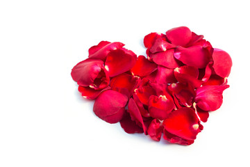 Valentines Day Heart Made of Red rose petalsIsolated on White Background.