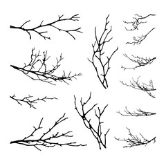 Realistic set of tree branches silhouette (Vector illustration)ai10