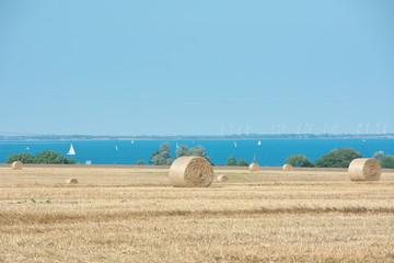 Strohballen auf einem Feld in Schleswig-Holstein an der Ostsee