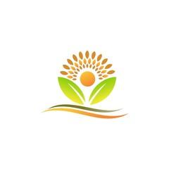 leaf sun logo