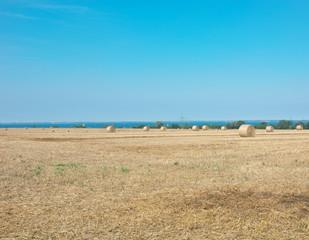 Strohballen vor der Ostsee in Schleswig-Holstein als Panorama