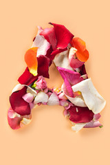 Letter A made from red roses and petals isolated on a white background