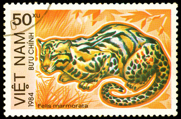 Ukraine - circa 2018: A postage stamp printed in Vietnam show Marbled Cat or Felis marmorata. Series: Endangered Animals. Circa 1984.