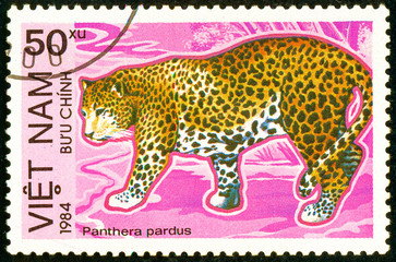 Ukraine - circa 2018: A postage stamp printed in Vietnam show Leopard or Panthera pardus. Series: Endangered Animals. Circa 1984.