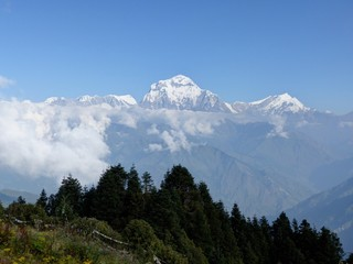 Dhaulagiri range from Poon Hill - one of the most visited Himalayan view points in Nepal, view to snow capped Himalaya, Annapurna Circuit