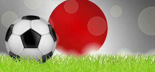 Fußballwiese - Flagge von Japan