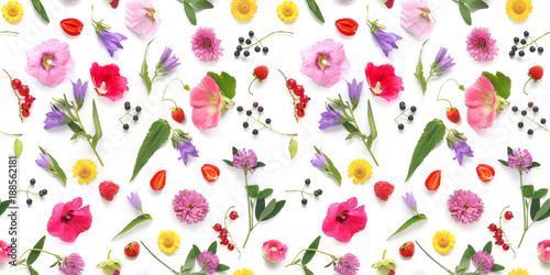 Fototapete Seamless pattern from plants, wild flowers and  berries, isolated on white background, flat lay, top view. The concept of summer, spring, Mother's Day, March 8.