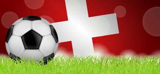 Fußballwiese - Flagge von Schweiz