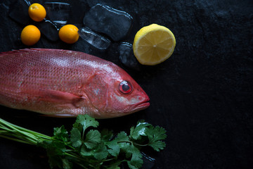 Whole fresh Red Snapper displayed on a black background with ice and copy space