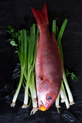 Raw whole fresh Red Snapper on a bed of green onions displayed on a dark background with a kumquat in its mouth.