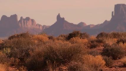 Wall Mural - Arizona Desert Landscape During Sunset. Northern Arizona, United States of America