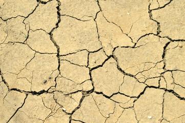 Трещины на сухой земле в жаркое лето.
