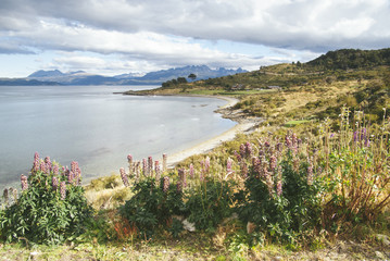 Beagle canal in the National park of Ushuaia in Argentina.