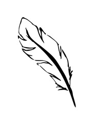 black and white silhouette of bird feather