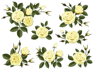 Yellow rose boutonniere. Set for floral design of a greeting, wedding or invitation card. Bouquet of decorative garden flower. Bud, petals and leaves of plant.