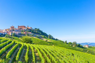 La Morra vineyards,Piedmont, Italy.