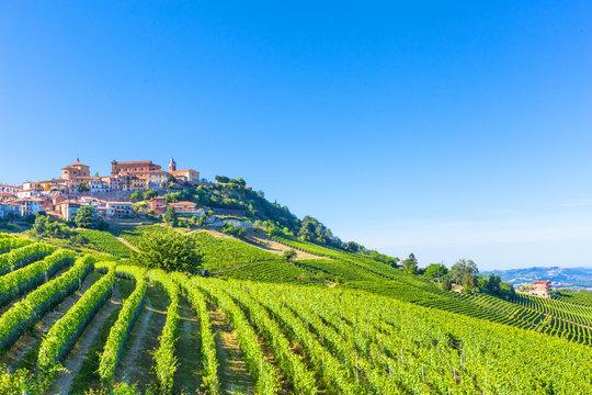 La Morra vineyards,Piedmont, Italy.