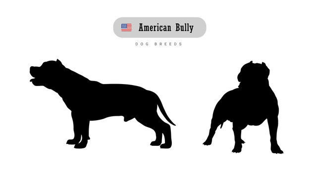 Dog breed American Bully. Side and front view silhouettes isolated on white background.