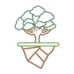 elm tree design