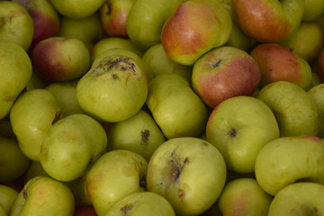 Apples in a Pile at the Farmers Market