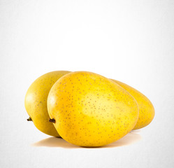 mango or yellow mango on a background.