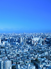 Fototapete - 東京都の都市景観