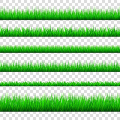Spring green grass  borders  set  isolated on transparent  background.