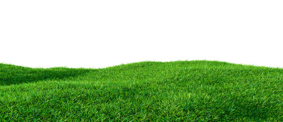 Green grass field on small hills, isolated