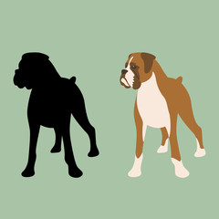 dog boxer  vector illustration flat style front  silhouette
