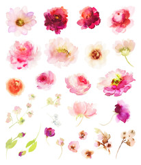 A set of watercolor elements for greeting cards.
