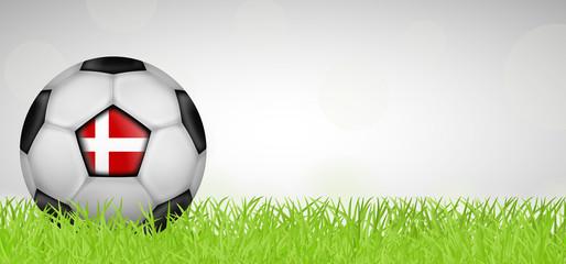 Fußballwiese - Fußball Dänemark