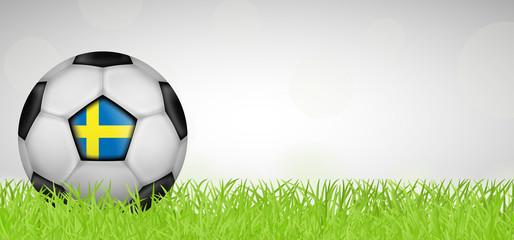 Fußballwiese - Fußball Schweden