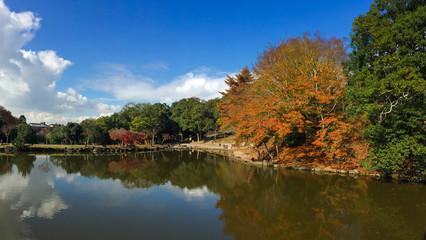 Landscape of Nara National Park in Japan