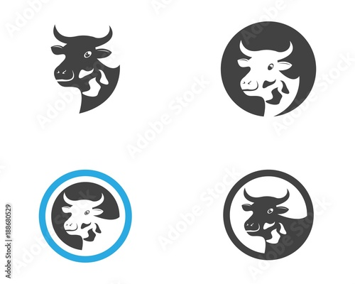cow head logo design template stock image and royalty free vector