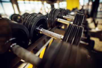 Close up of black dumbbells in row in the gym.