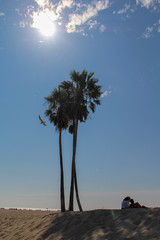 A couple sitting in the shade of two palm trees on Venice beach, california