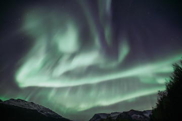 Norwegen | Polarlichter, Alta