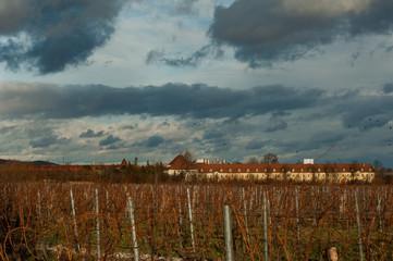Wolkenhimmel über Feldern