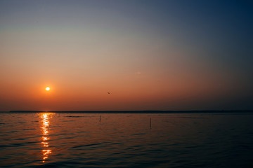 sunrise over river with orange sky and flying Seagull
