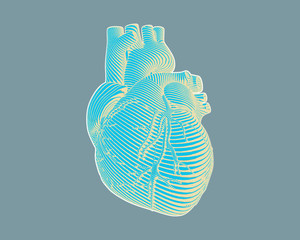 Engraving stylized heart drawing on gray BG