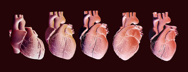 Human heart illustration in various view on dark BG