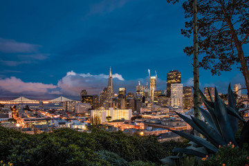 San Francisco from Ina Coolbrith Park
