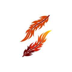 vector of quill