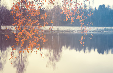 Autumn scene.Fall foliage.Orange leaves of birch tree on a blurred background of the pond in the park.Selective focus.Focus on a foreground.Vintage colors.